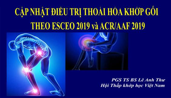 [Tài liệu] Cập nhật điều trị thoái hóa khớp gối theo ESCEO 2019 và ACR/AAF 2019 - PGS. TS Lê Anh Thư